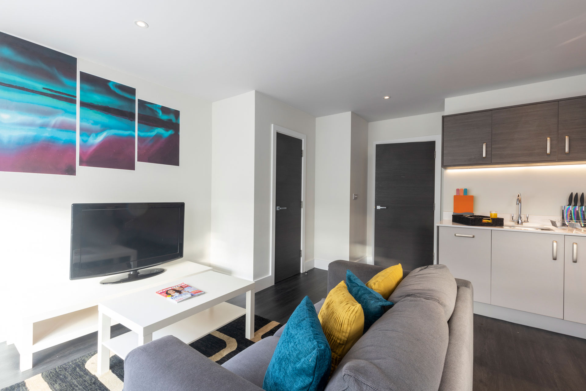 Aria – Luxury One Bedroom Apartments